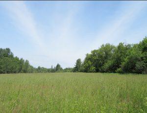 prairie-du-nord-ouest-300x231-3409264